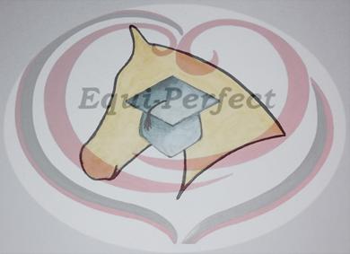 EquiPerfect EquiCursus